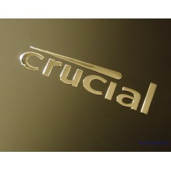 Crucial Label / Aufkleber / Sticker / Badge / Logo 45mm x 11mm [415]